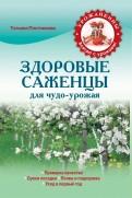 Татьяна Плотникова: Здоровые саженцы для чудоурожая