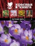 Галина Мелихова: Красная книга. Растения мира