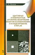 Владимир Волков: Адаптивные и инвариантные алгоритмы обнаружения объектов на изображениях и их моделирование в Matlab