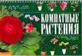 Маргарита Якушева: Комнатные растения. 100 самых популярных. Уход и выращивание. Размножение. Болезни и вредители