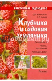 Клубника и садовая земляника - Никиточкин, Сырицо