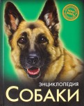 Леся Калугина: Собаки