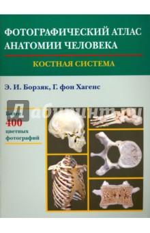 Фотографический атлас анатомии человека. Костная система - Борзяк, Гунтер