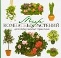 Голубев, Ремизов: Мир комнатных растений