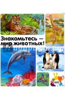 Знакомьтесь - мир животных!