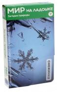 Мир на ладошке-1. Загадки природы (2004)