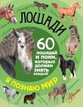 Федор Келлер: Лошади