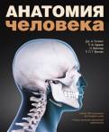 Гослинг, Харрис, Вайтмор: Анатомия человека. Цветной атлас и учебник анатомии