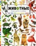 Животные. Учим цвета и цифры обложка книги