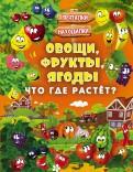 Людмила Доманская - Овощи, фрукты, ягоды. Что где растёт? обложка книги