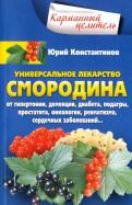 Юрий Константинов: Уникальное лекарство. Смородина