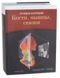 Манастер, Крим: Лучевая анатомия. Кости, мышцы, связки