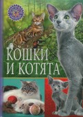Кошки и котята обложка книги