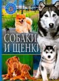 Собаки и щенки обложка книги