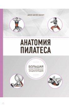 анатомия пилатеса скачать бесплатно