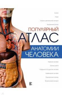 Энциклопедия здорового секса анатомия человека