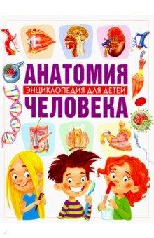 Анатомия человека. Энциклопедия для детей - Винченцо Гуиди