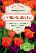 Цветы и садовые растения