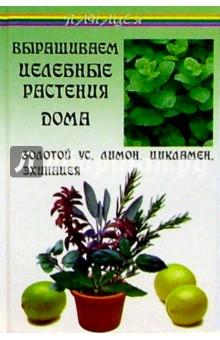 Выращиваем целебные растения дома: Золотой ус, лимон, цикламен, эхинацея - Виктор Казьмин