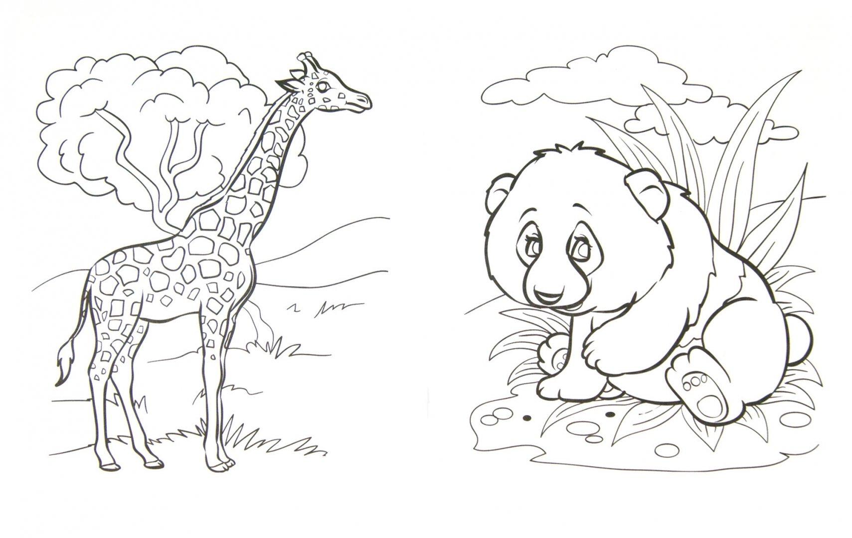 ногтей цветным раскрасить картинку животного из красной книги ведь джоан