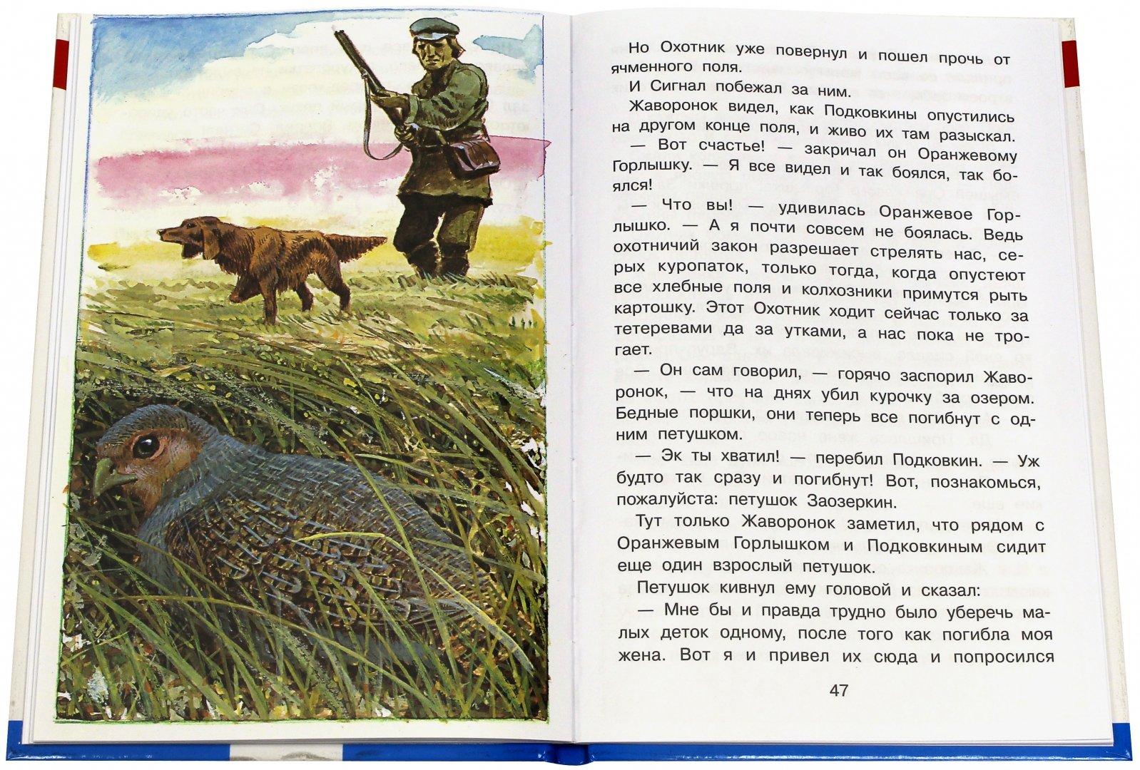 Иллюстрация 2 из 25 для Тайна ночного леса - Виталий Бианки   Лабиринт - книги. Источник: Лабиринт