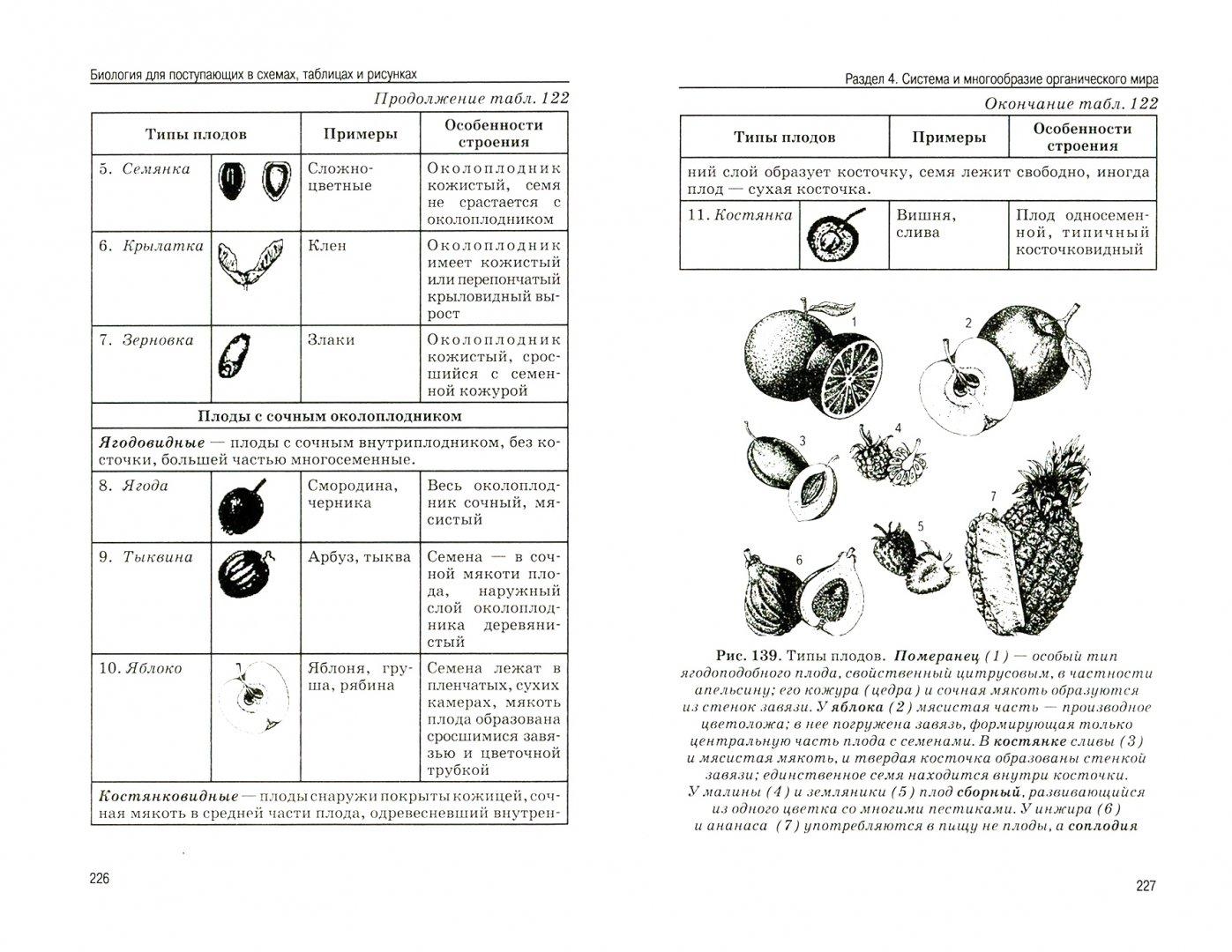 Как таблицу преобразовать в картинку кисуля