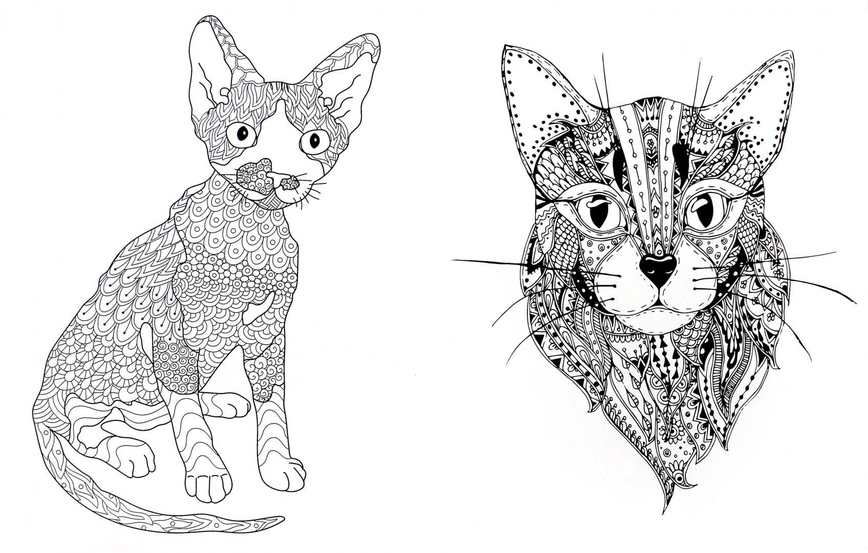 Иллюстрация 1 из 23 для Cats. Творческая раскраска ...