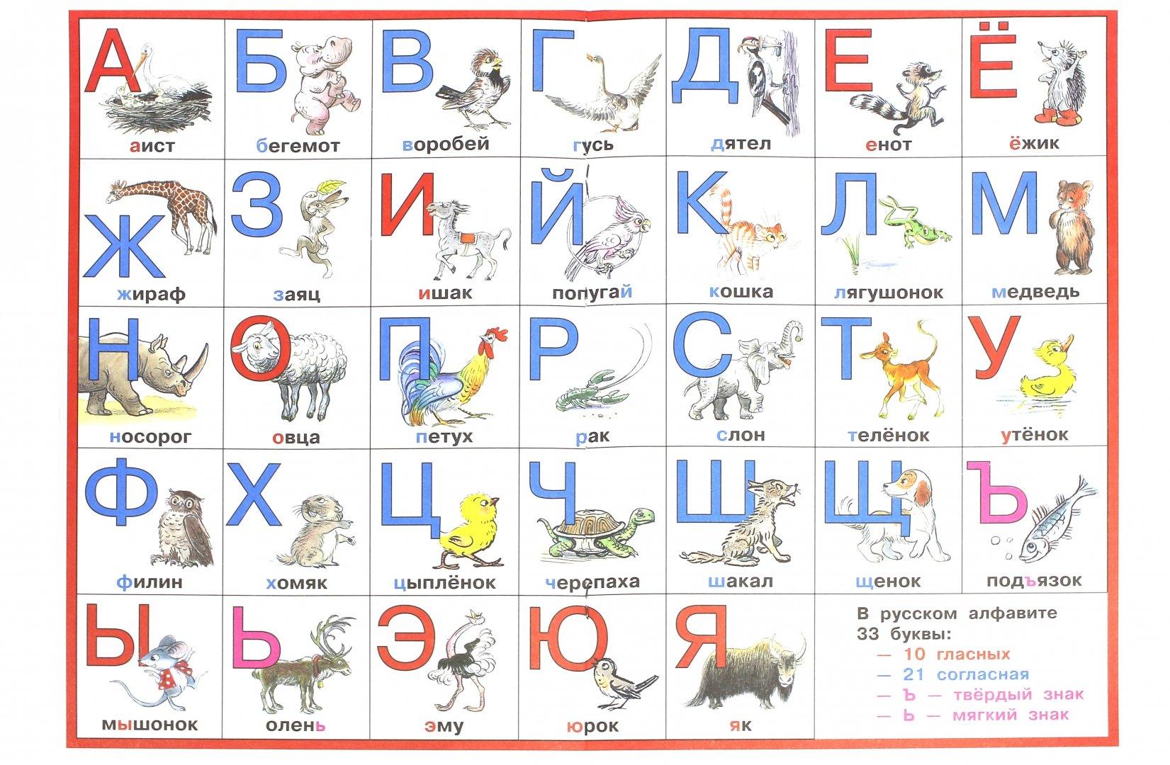проект моя азбука с картинками животных отличается мужская стрижка