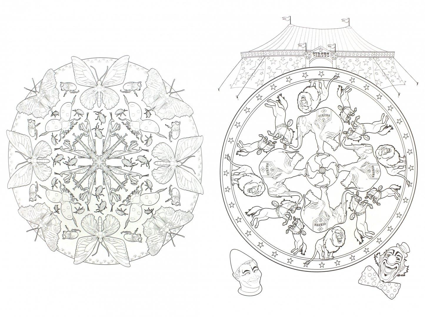Иллюстрация 1 из 5 для Цветочные мандалы. Раскраска ...