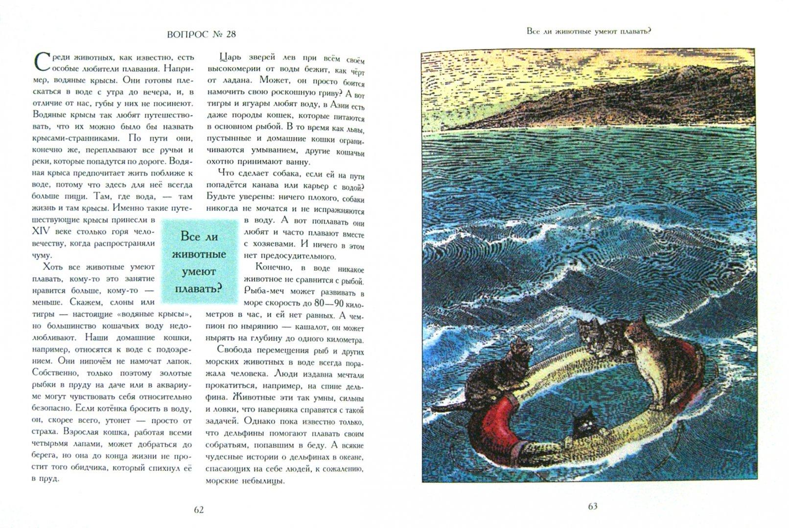 Иллюстрация 1 из 43 для Сколько иголок у ежа?.. и другие вопросы директору зоопарка - Визнер, Мюллер   Лабиринт - книги. Источник: Лабиринт