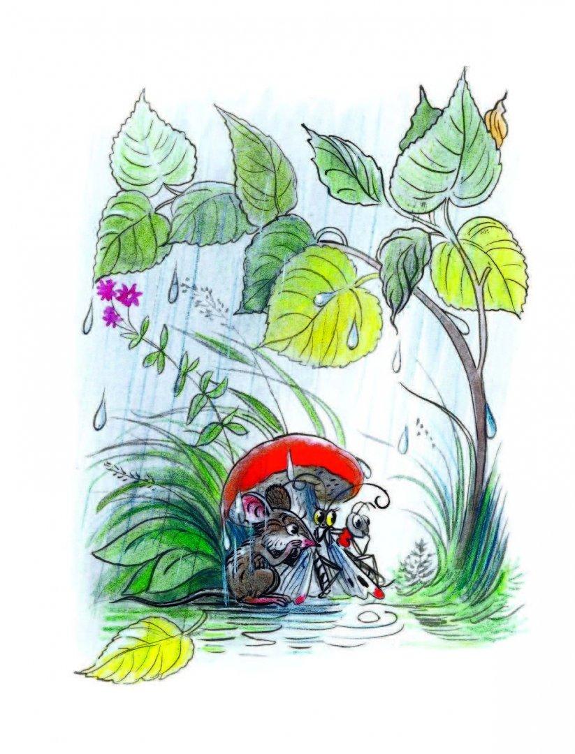 семейной картинки к сказке сутеева под грибом мыло