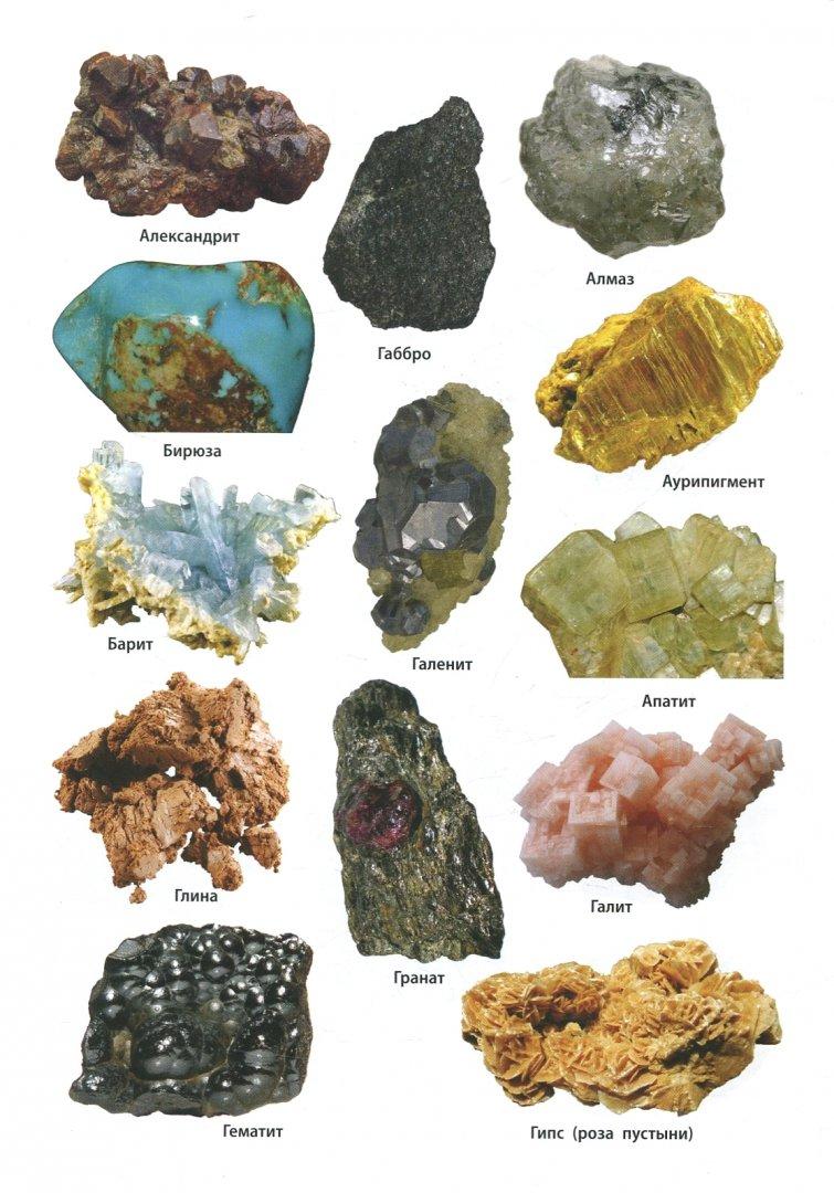 Фото минералов и горных пород с названиями