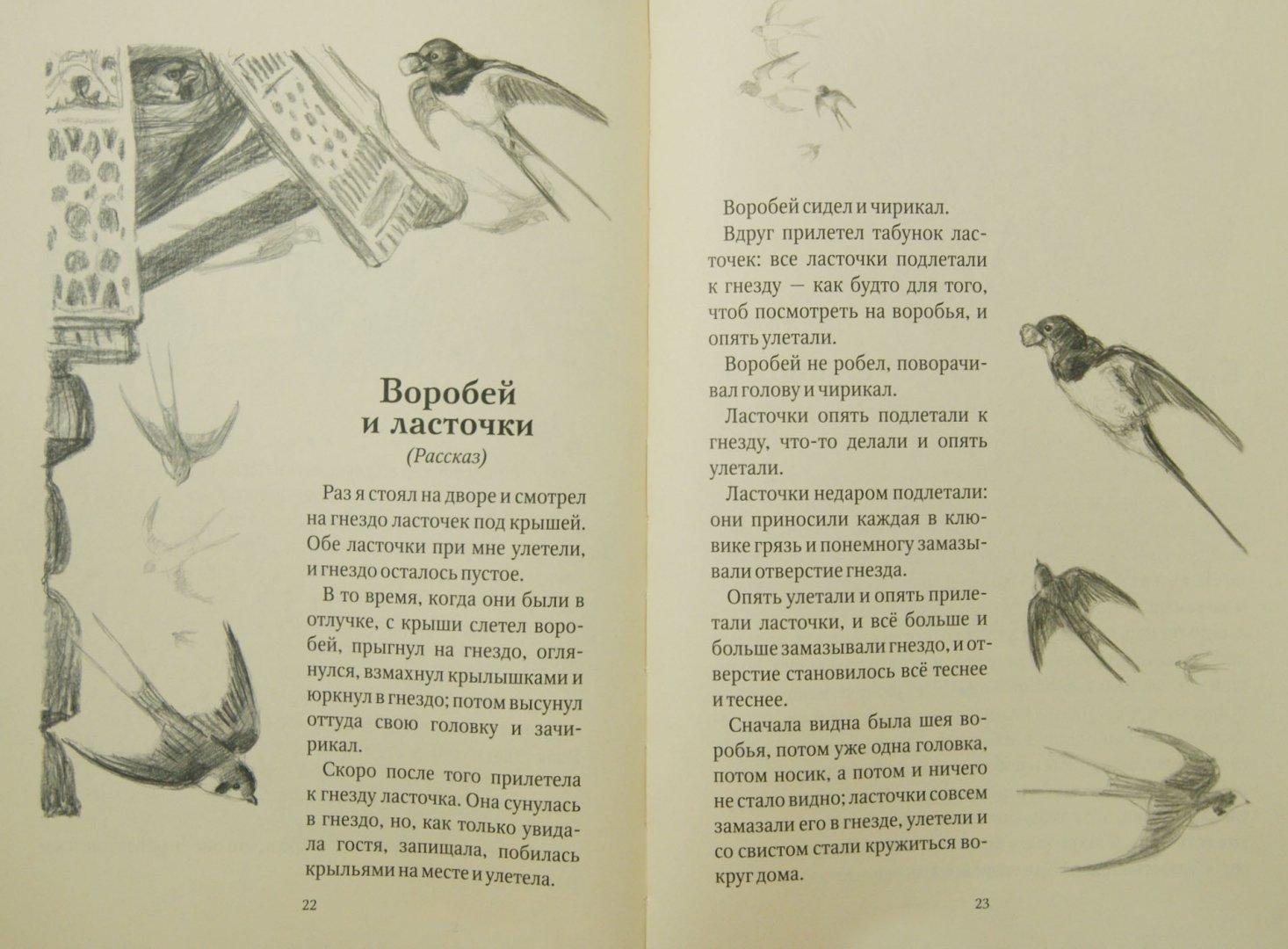 Иллюстрация 1 из 20 для Косточка. Рассказы из азбуки (+CD) - Лев Толстой | Лабиринт - книги. Источник: Лабиринт