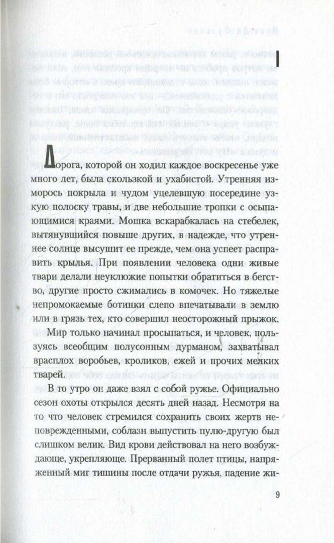 Иллюстрация 1 из 4 для Чучельник: Роман - Фульвио Ди | Лабиринт - книги. Источник: Лабиринт