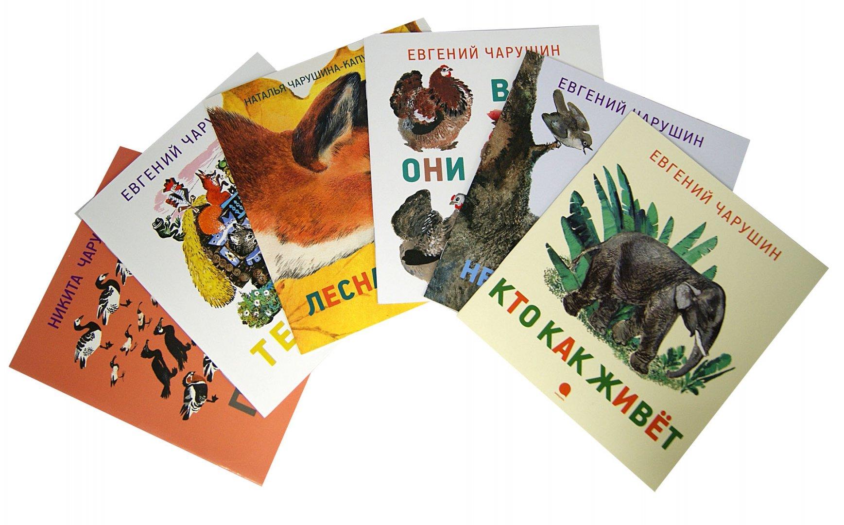 Иллюстрация 2 из 15 для Чарушинские зверята.  Комплект из 6 брошюр - Чарушин, Чарушина-Капустина | Лабиринт - книги. Источник: Лабиринт
