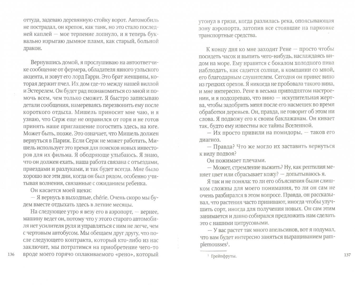 Иллюстрация 1 из 8 для Возвращение на оливковую ферму - Кэрол Дринкуотер | Лабиринт - книги. Источник: Лабиринт