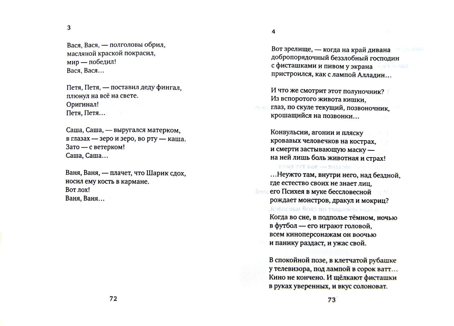 Иллюстрация 1 из 37 для Герой - Олеся Николаева   Лабиринт - книги. Источник: Лабиринт