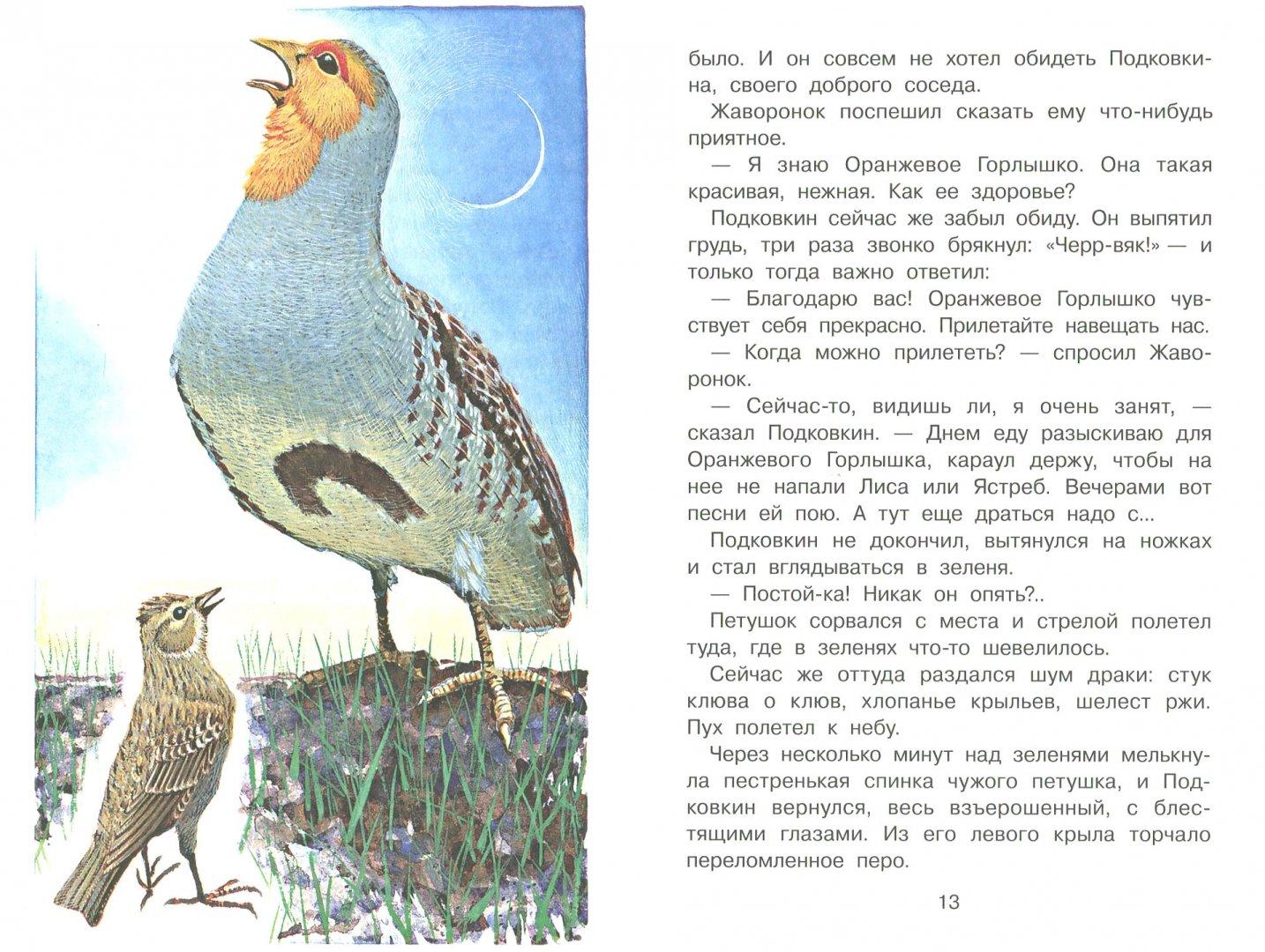 Иллюстрация 3 из 25 для Тайна ночного леса - Виталий Бианки   Лабиринт - книги. Источник: Лабиринт