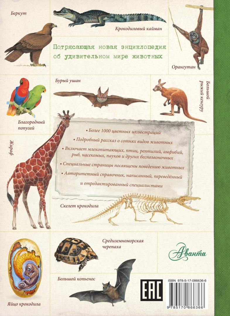 Иллюстрация 1 из 18 для Животные. Детская энциклопедия   Лабиринт - книги. Источник: Лабиринт