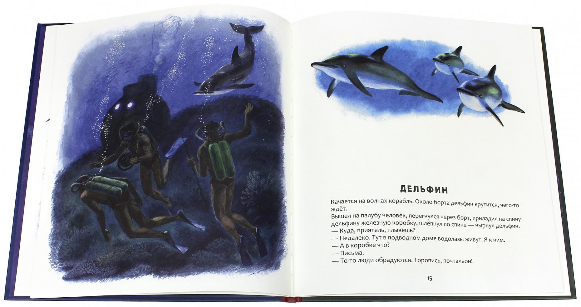 Иллюстрация 1 из 61 для Кто в море живет - Святослав Сахарнов | Лабиринт - книги. Источник: Лабиринт