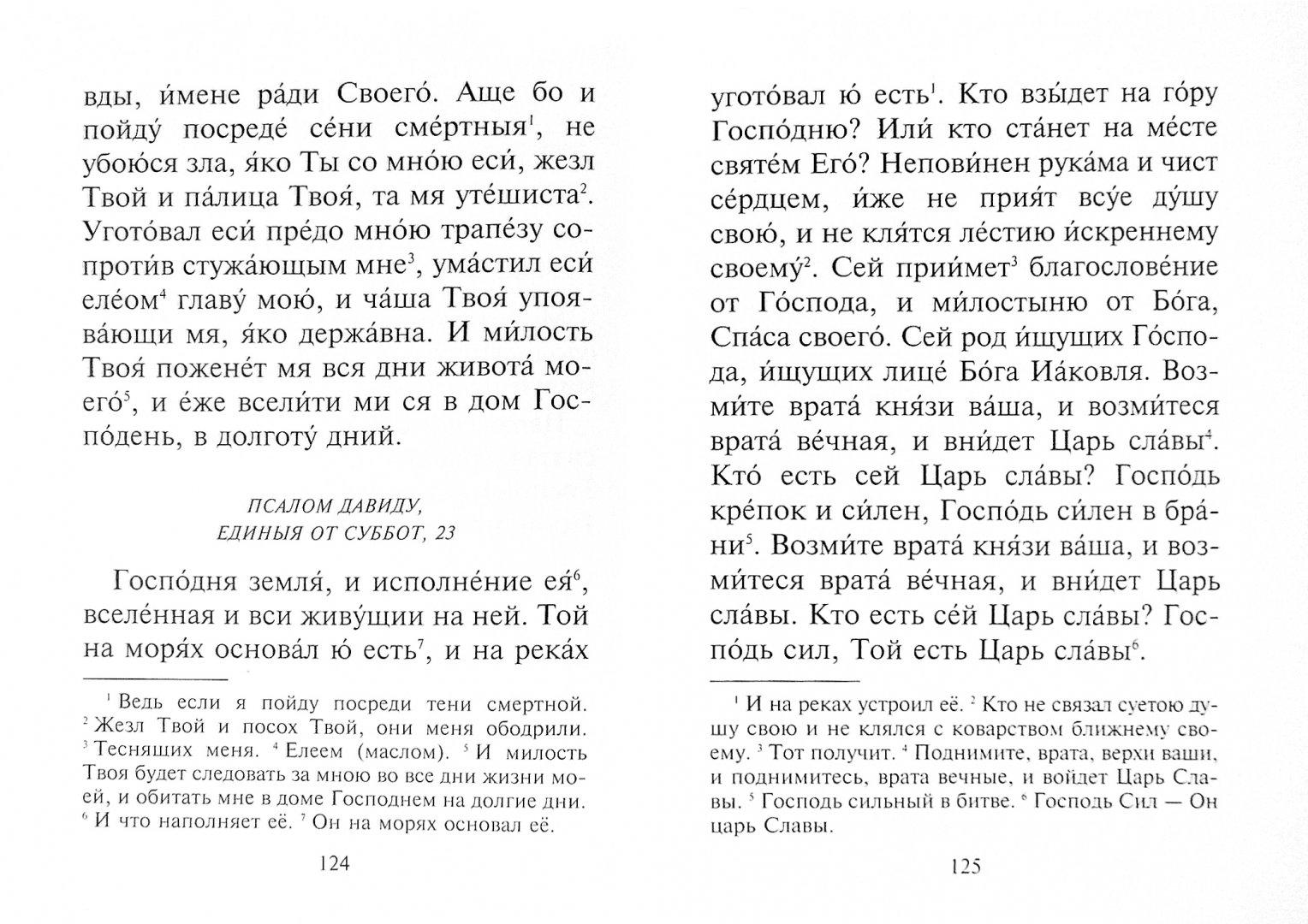 Иллюстрация 1 из 32 для Толковый молитвослов. С текстами Литургии и Всенощного бдения   Лабиринт - книги. Источник: Лабиринт