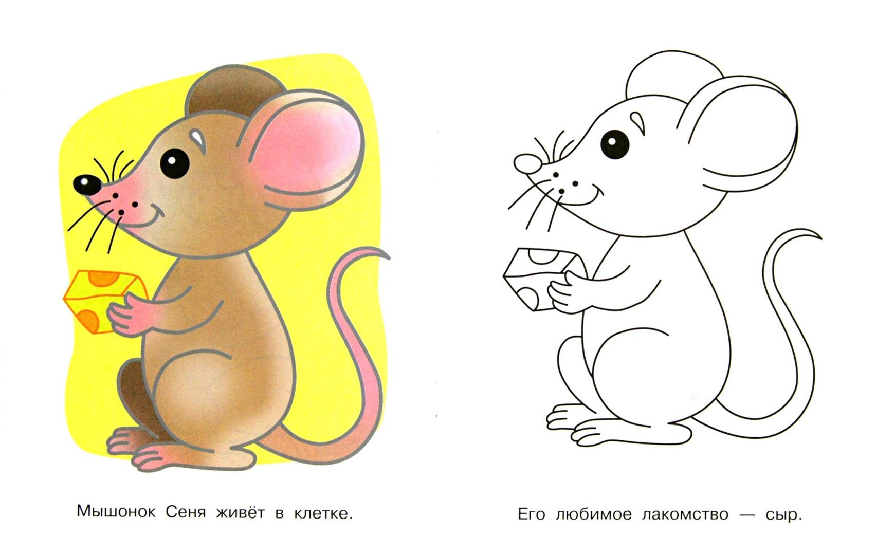 Иллюстрация 1 из 14 для Домашние питомцы. Щенок Тишка | Лабиринт - книги. Источник: Лабиринт