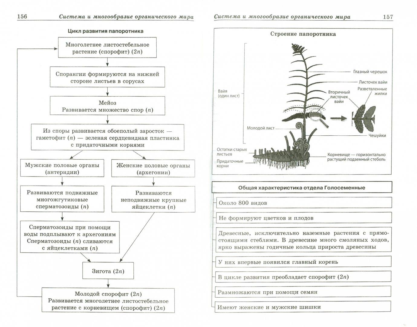 дни биология в картинках и схемах огэ полках