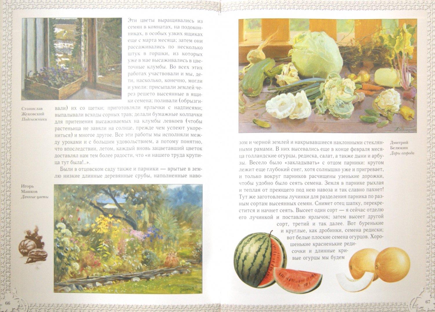 Иллюстрация 1 из 26 для Лепестки - Дмитрий Кайгородов   Лабиринт - книги. Источник: Лабиринт