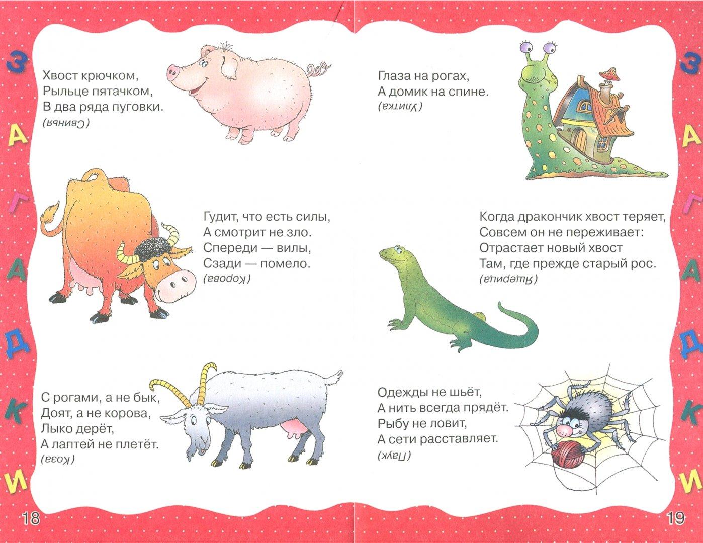 Загадки детские с ответами картинками
