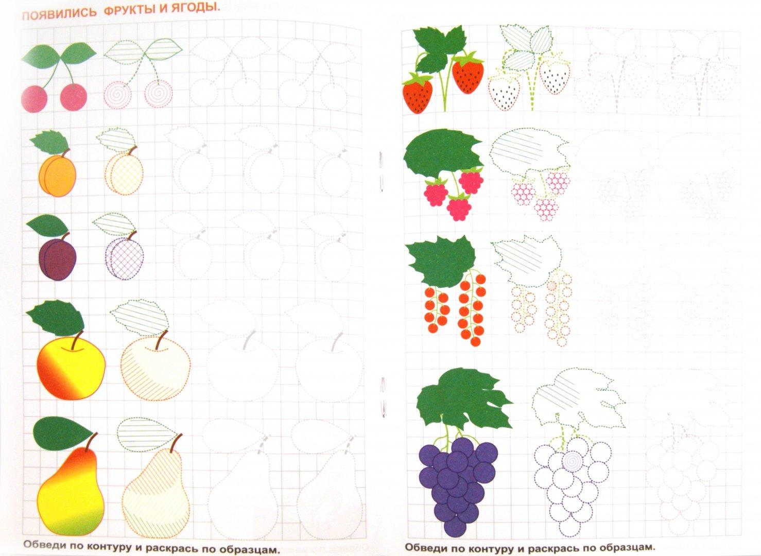 Иллюстрация 1 из 27 для Готовим руку к письму. Рисуем овощи и фрукты - О. Кучеренко | Лабиринт - книги. Источник: Лабиринт
