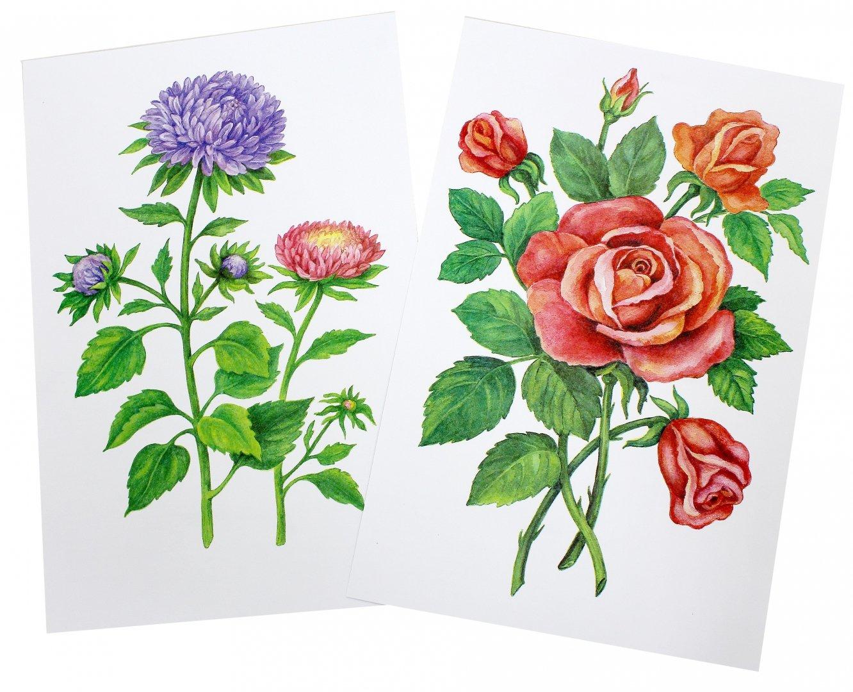 Летием сыну, картинки цветы для детей в детском саду