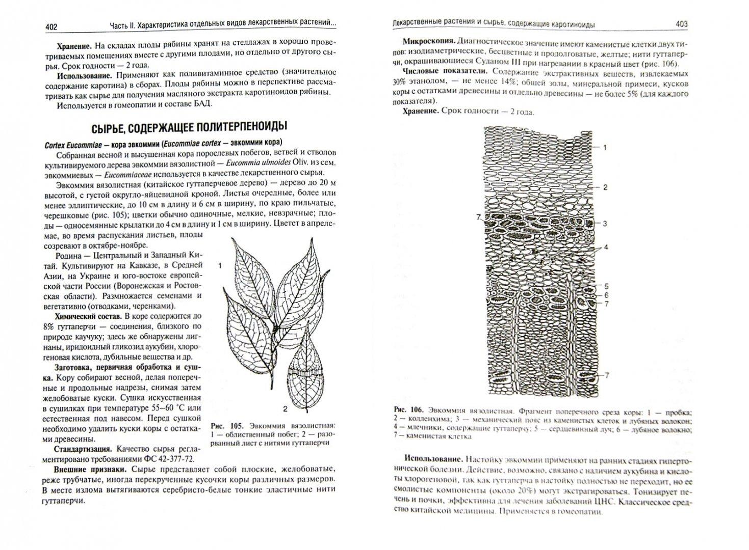Иллюстрация 1 из 31 для Фармакогнозия. Учебник - Самылина, Яковлев | Лабиринт - книги. Источник: Лабиринт