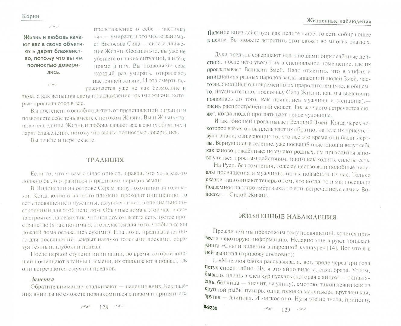 Иллюстрация 1 из 2 для Вращение силы - Владимир Жикаренцев | Лабиринт - книги. Источник: Лабиринт