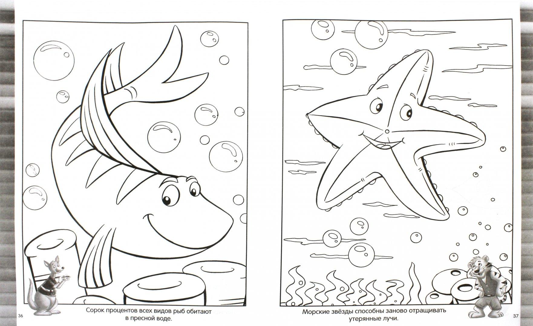 картинки для раскраски на морскую тему гульнур означает